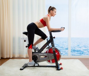 Sunny Health & Fitness Belt Drive Indoor Cycling Bike SF-B1002