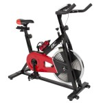 Best Choice Products Exercise Bike Indoor Cycling