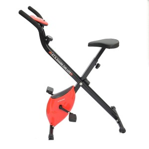 Loctek X Bike LF101 Indoor Cycling