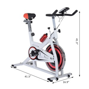 Soozier Pro Upright Indoor Cardio Bike
