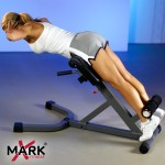 XMark 45 Degree Ab Back Hyperextension Roman Chair XM-4428