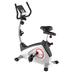 Fitleader Indoor Upright Bike Exercise Magnetic Stationary Bike