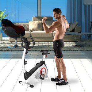 Fitleader Indoor Upright Bike Exercise Magnetic Stationary Cycle
