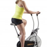 Weslo Pursuit R 1.2 Upright Exercise Bike