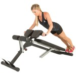 IRONMAN Triathlon X-Class Light Commercial Multi-Workout Abdominal and Back Extension Bench