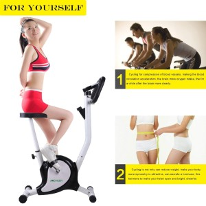 Ancheer Upright Bike Indoor Cycle