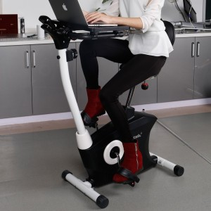 Fitleader Loctek UF6M Stationary Magnetic Desk Exercise Bike
