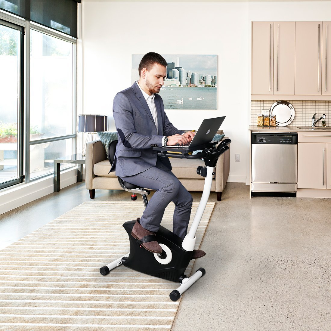 Loctek UF6M Stationary bike Magnetic Desk Exercise Bike