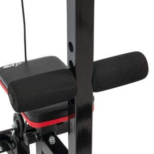 ALPINE Lat Bar Low Row Cable Pull Down