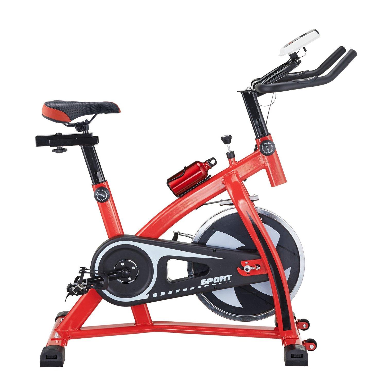 Pinty Pro Stationary Upright Exercise Bike