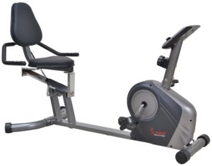 Sunny Health & Fitness SF-RB4602 Recumbent Bike with Extra Capacity