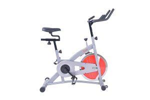 Sunny Health & Fitness SF-B1421B Belt Drive Indoor Bike