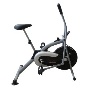 Sunny Health and Fitness Cross Training Fan Bike SF-B2621