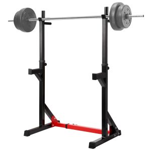 Ollieroo Multi-function Barbell Rack Dip Stand Gym