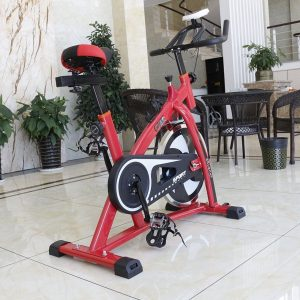 Homgrace Exercise Bike Indoor Cycle Bike, Indoor Bike