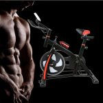 SUGARHOST Stationary Exercise Bike Indoor Bike
