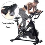 PYHIGH Indoor Cycling Bike-48lbs Flywheel