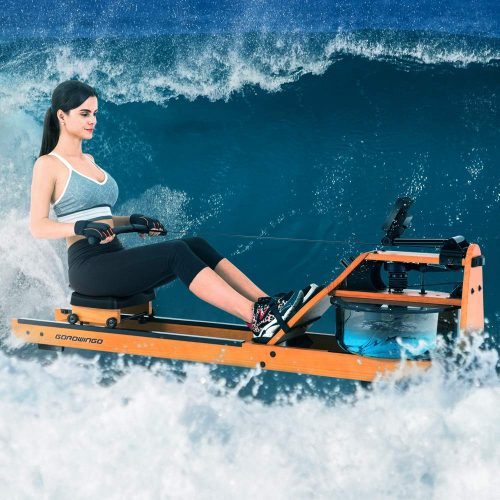 GOROWINGO Water Rower Pro Indoor Rowing Machine