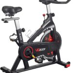 VIGBODY Exercise Bike