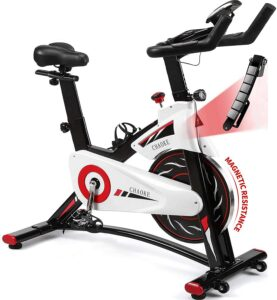 CHAOKE Indoor Stationary Spin Bike