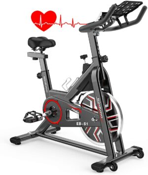 Rinkmo Indoor Cycling Spin Bike