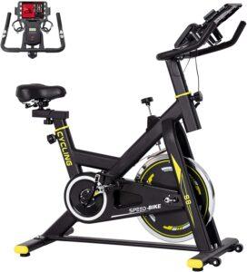 BINHIA S8 Indoor Exercise Bike.
