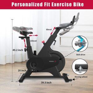 YESOUL M1 Stationary Spin Exercise Bike