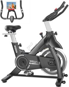 WELYAS Indoor Stationary Bike